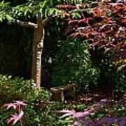 Japanese Garden Bench Art Print