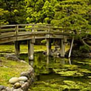 Japanese Garden Tokyo Art Print