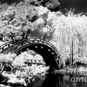 Japanese Gardens And Bridge Art Print