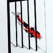Japanese Mirror Koi Doitsu Showa Art Print