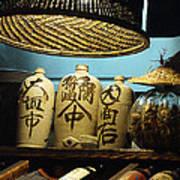 Japanese Sake Perfection Art Print