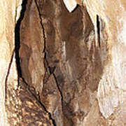 Javoricko Stalactite Cave Art Print