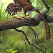 Jeholornis Prima Perched On A Tree Print by Sergey Krasovskiy