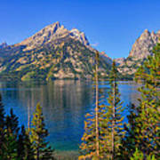 Jenny Lake Overlook Art Print