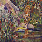 Jerrys Tiger Art Print