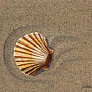 Jewel On The Beach II Art Print
