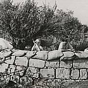 Jews Guard Their Settlement Art Print