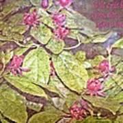 John 15 18 Art Print