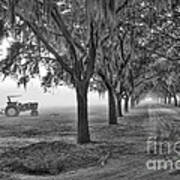 John Deer Tractor And The Avenue Of Oaks Art Print by Scott Hansen
