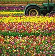 John Deere Tulips Art Print