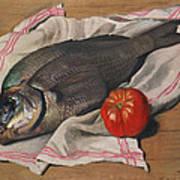 John Dory Art Print