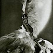 Josephine Baker Wearing A Feathered Cape Art Print