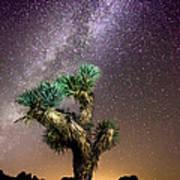 Joshua Tree Vs The Milky Way Art Print