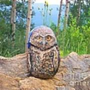 Journey Of Burrowing Owl Art Print