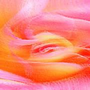 Joy - Rose Art Print