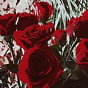 Joyful Roses   Art Print