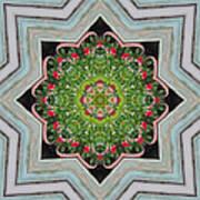 Jubilant Mandevilla Kaleidoscope Pattern Art Print