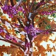 Judas Tree Jerusalem Art Print