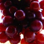 Juicy Grapes Art Print