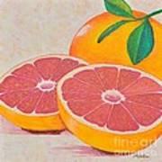 Juicy Pink Grapefruit Art Print