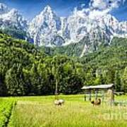 Julian Alps Farm Art Print