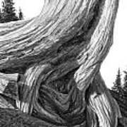 July 12 Art Print by Doug Fluckiger