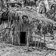 Jungle Hut In A Tropical Rainforest - Black And White Art Print