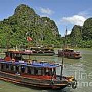 Junk Boats In Halong Bay Art Print