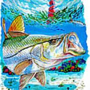 Jupiter Snook Art Print