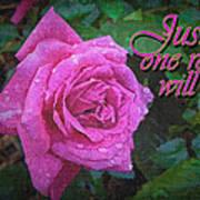 Just One Rose Art Print