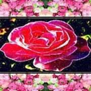 Just Rosy Art Print