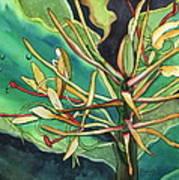 Kahili Ginger Art Print