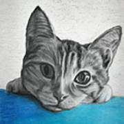 Kahlua Kitty Art Print