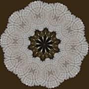Kaleidoscope 36 Art Print
