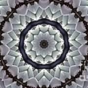 Kaleidoscope 63 Art Print