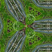 Kalido Plant Fronds Art Print