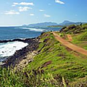 Kauai Coast Art Print
