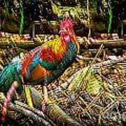 Kauai Rooster Art Print