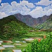 Kauai Taro Fields Art Print