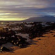 Keawakupu Beach Lava Evening Light Maui Hawaii Art Print