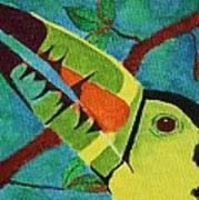 Keel-billed Toucan Art Print