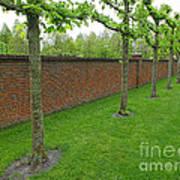 Keukenhof Gardens 11 Art Print