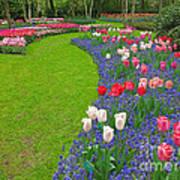 Keukenhof Gardens 52 Art Print