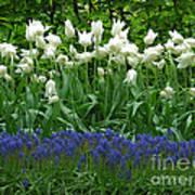 Keukenhof Gardens 92 Art Print