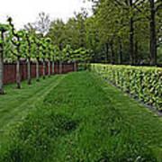 Keukenhof Gardens Panoramic 10 Art Print