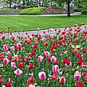 Keukenhof Gardens Panoramic 49 Art Print