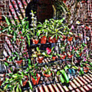 Key West Garden Club Pots Art Print