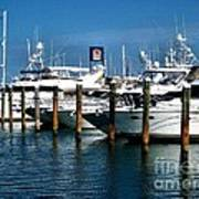 Key West Marina Art Print by Claudette Bujold-Poirier
