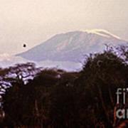 Kilimanjaro In The Morning Art Print