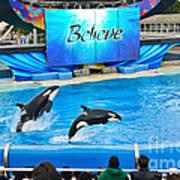 Killer Whales Perform In Shamu Stadium At Seaworld. Art Print